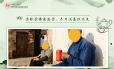 茶叶明信片