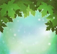 梦幻绿色枫叶背景矢量素材