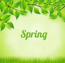 春天绿色树叶与草地矢量素材