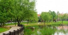 桔子洲公园水景
