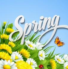 美丽春天雏菊花丛矢量素材