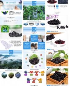 蓝莓干详情页