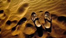 金色的沙滩 拖鞋