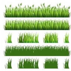 绿色草丛设计矢量素材
