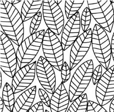 插画 树叶