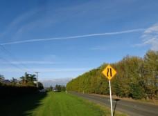新西兰农场风光