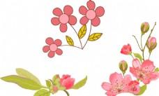 粉色鲜花花朵