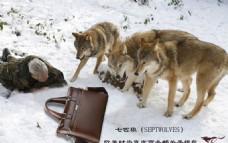 七匹狼真皮商务男士手提包平面广