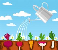 被浇水的蔬菜矢量素材