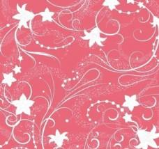 粉底白色弯曲枝条和花朵