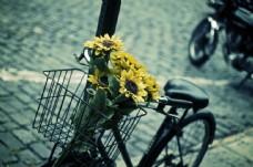 载满鲜花的自行车