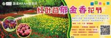 郁金香花节自驾游