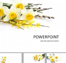 鲜花PPT   唯美PPT