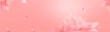 素色全屏花卉图案背景海报