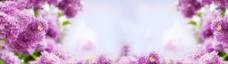 唯美紫色淘宝海报背景