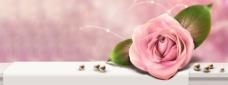 唯美玫瑰花吧背景