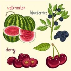 4款彩绘水果设计矢量素材