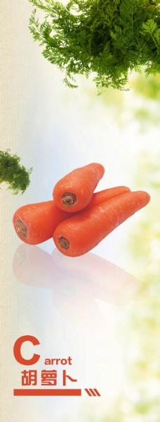 胡萝卜海报  蔬菜海报