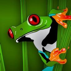 绿色的丛林中的青蛙背景图案
