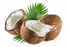美味椰子PSD分层素材
