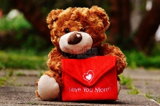 拿着贺卡的泰迪熊