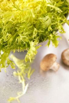 绿色青菜与蘑菇图片