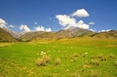 新疆阿尔夏提风景