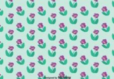 紫色三色堇花图案