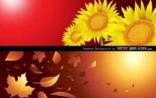 四季背景(秋季和夏季)