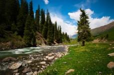 新疆伊犁风景