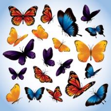 蝴蝶背景素材