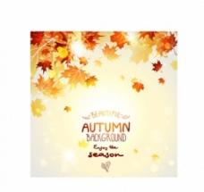 美丽的秋叶背景创意向量自由向量