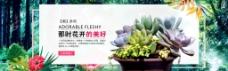 多肉植物海报