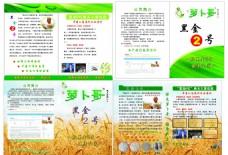 小麦 蓝天白云 宣传页 彩页