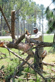 加工树枝的工人