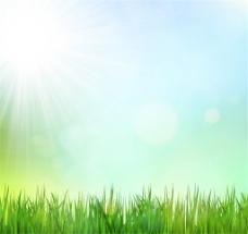 清新绿草地背景矢量素材