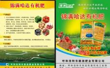 锦满哈达宣传页