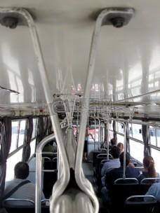 Bus_Assorted_7935(2).JPG