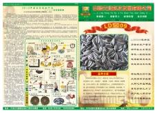 葵花籽宣传报纸