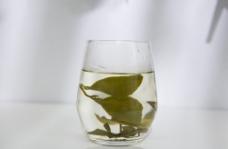 茶叶高清特写图片
