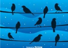 在夜间的电线上的鸟矢量