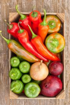 高精蔬菜拍摄图片