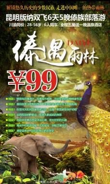 傣遇雨林云南旅游广告