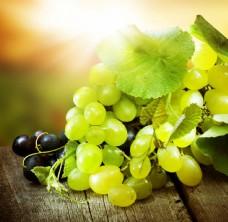新鲜的葡萄图片
