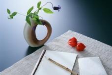 书桌上的植物与写作