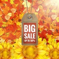 秋季降价宣传单设计素材图片