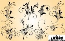优雅的花装饰集