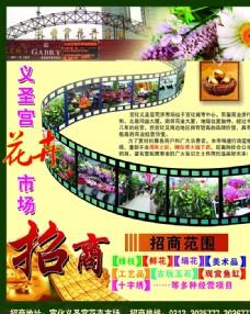 花卉招商胶片