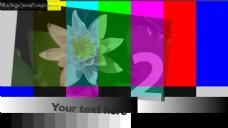 画廊展示视频素材
