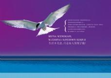 PSD飞翔海报素材下载